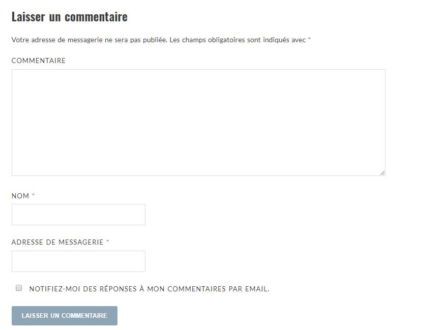 Formulaire de commentaires WordPress sans le champ site web