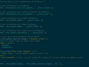 Mettre à jour automatiquement Wordpress, ses plugins et thèmes via le fichier functions.php