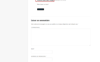 Détournement du formulaire de commentaiures de Wordpress pour gagner des backlinks