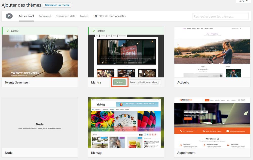 Activer le thème WordPress tout juste téléchargé et installé
