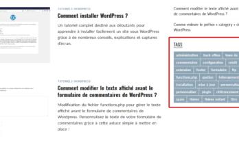 Exemple d'affichage des étiquettes sur la page d'accueil du site Astuces WordPress