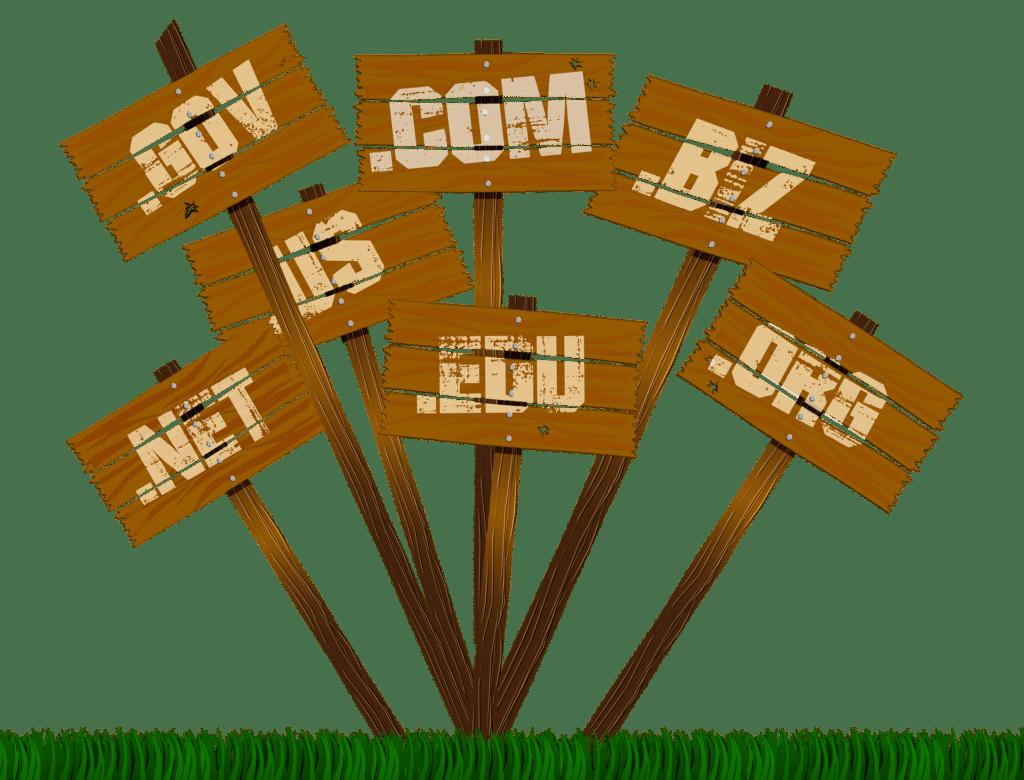 Quelques extensions de nom de domaine