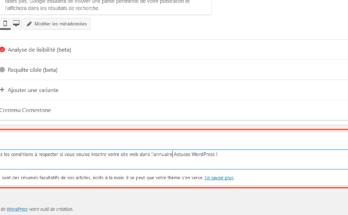 Ajout du champ Extrait dans l'administration des pages WordPress